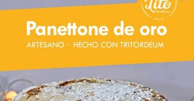 Panettone Artesano